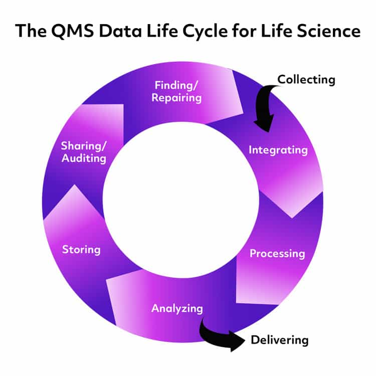 The Data Life Cycle in Life Science