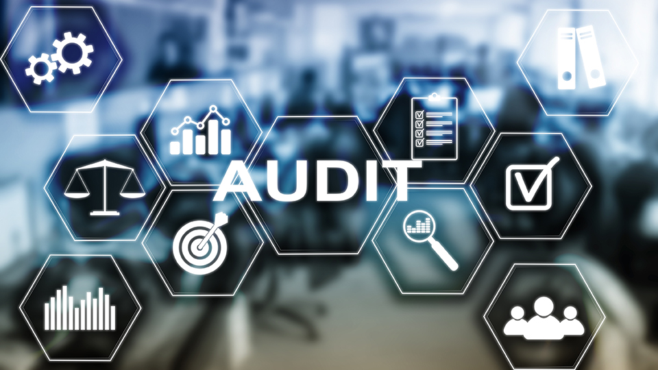 Audit Management is greatly enhanced with a quality QMS.